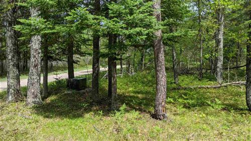 Photo of TBD Town M, Florence, WI 54121 (MLS # 1118718)