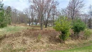 Photo of Lot Five Tall Pines, Iron Mountain, MI 49801 (MLS # 1111893)