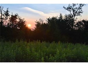 Photo of Lot 7 Fire Tower/Sheets Road, Champion, PA 15622 (MLS # 1399469)