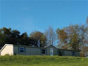Photo of 5913 State Route 488, PORTERSVILLE, PA 16051 (MLS # 1382842)