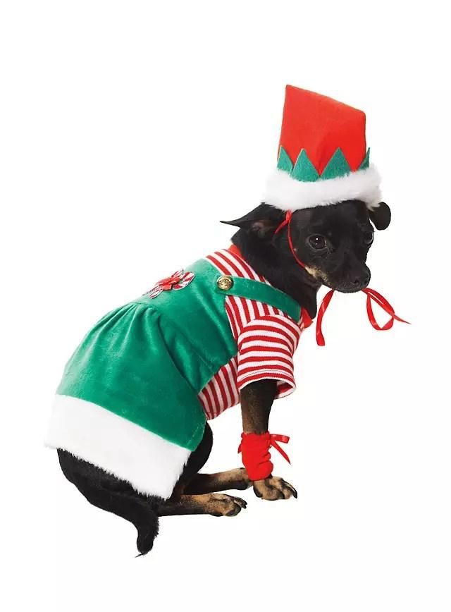 Christmas Elf Dog Costume
