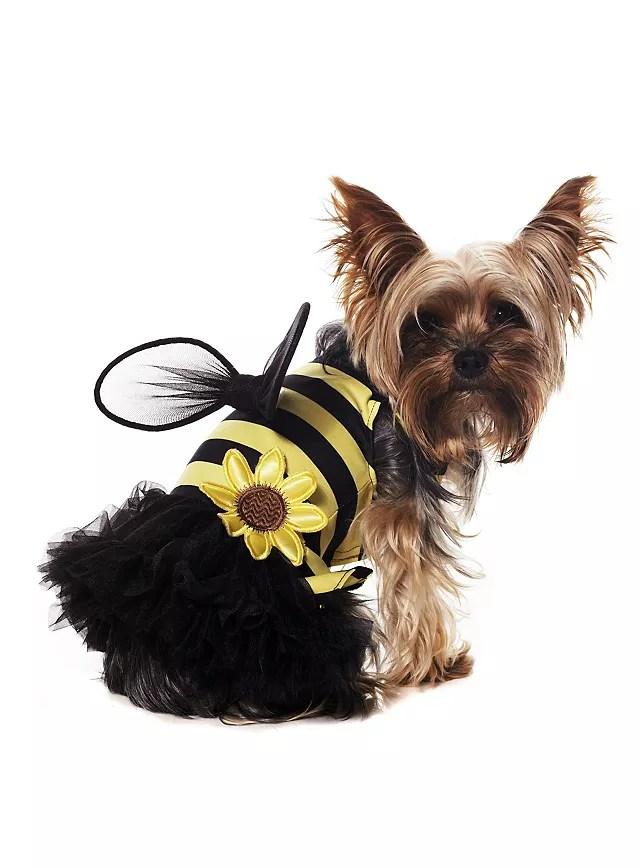 Queen Bee Dog Costume
