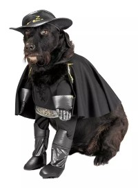 Zorro Dog Costume - maskworld.com