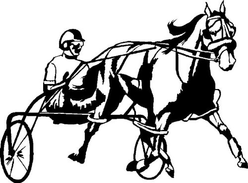 Harness Racing Horse Decal Outdoor Safe Black Left