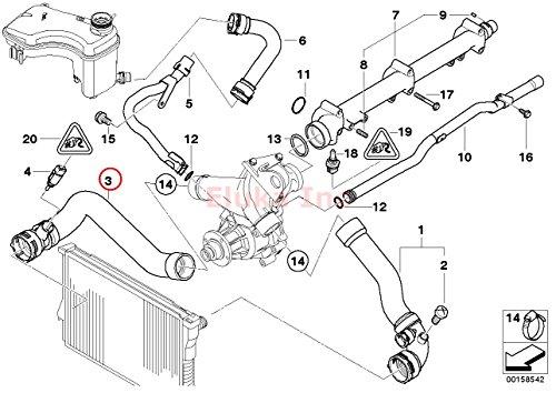 Bmw E46 Radiator Hose Lower to Thermostat W Temp Sensor