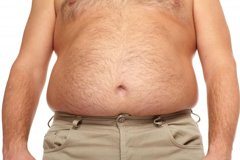 Genetic Clue Into Brown Fat Energy Burning May Lead To ...