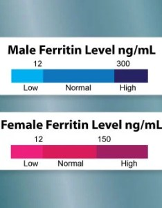 Chart shows ranges for male and female ferritin blood test levels also discover results normal rh medicinenet