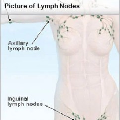 Where Are My Lymph Nodes Diagram Kohler Ignition Switch Wiring Swollen Pain In Neck Groin Ear Armpit Causes Symptoms