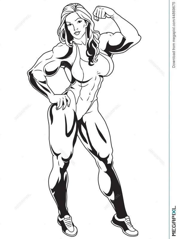 Muscular Woman Drawing : muscular, woman, drawing, Muscular, Illustration, 44869675, Megapixl