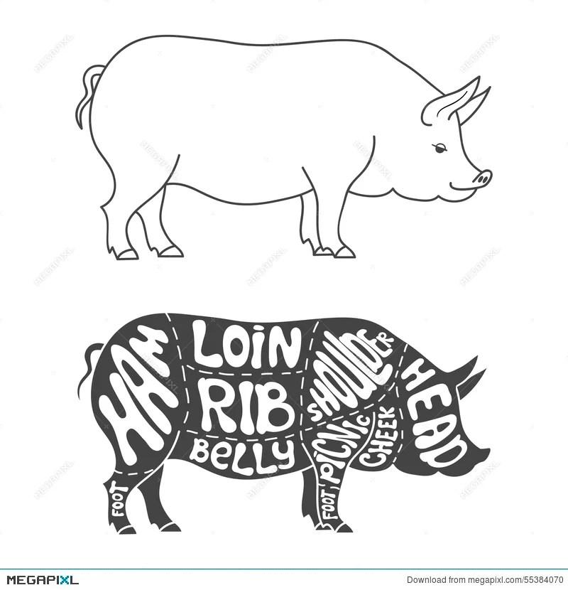 pig cuts diagram electric oil pressure gauge wiring pork illustration 55384070 megapixl