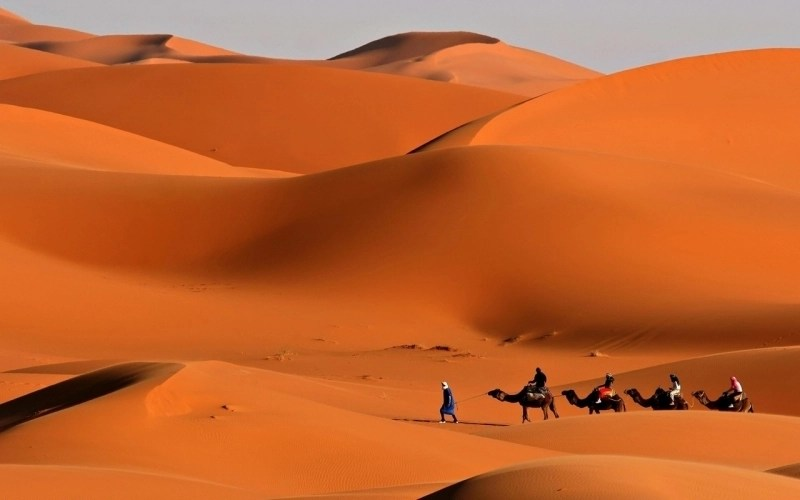Quad Hd Wallpaper Motorata Cammellata E Cena Beduina Nel Deserto Di Sharm