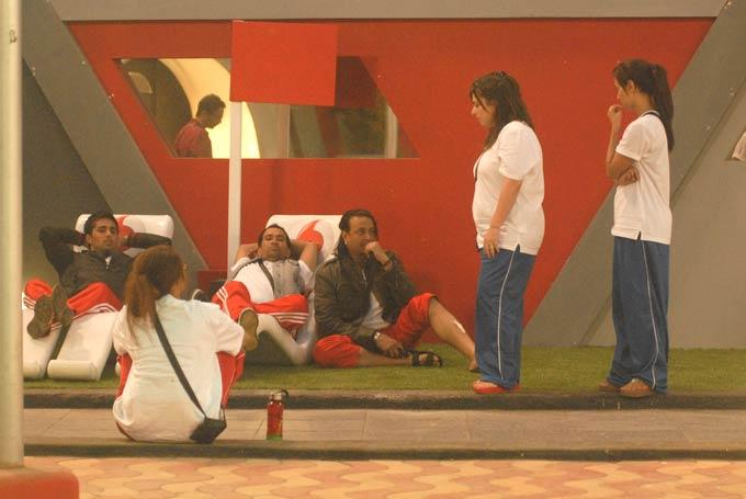 Delnaaz,Sana,Santosh,Dinesh,Vishal And Aashka Photo In Garden Area On Day 58 In Bigg Boss 6