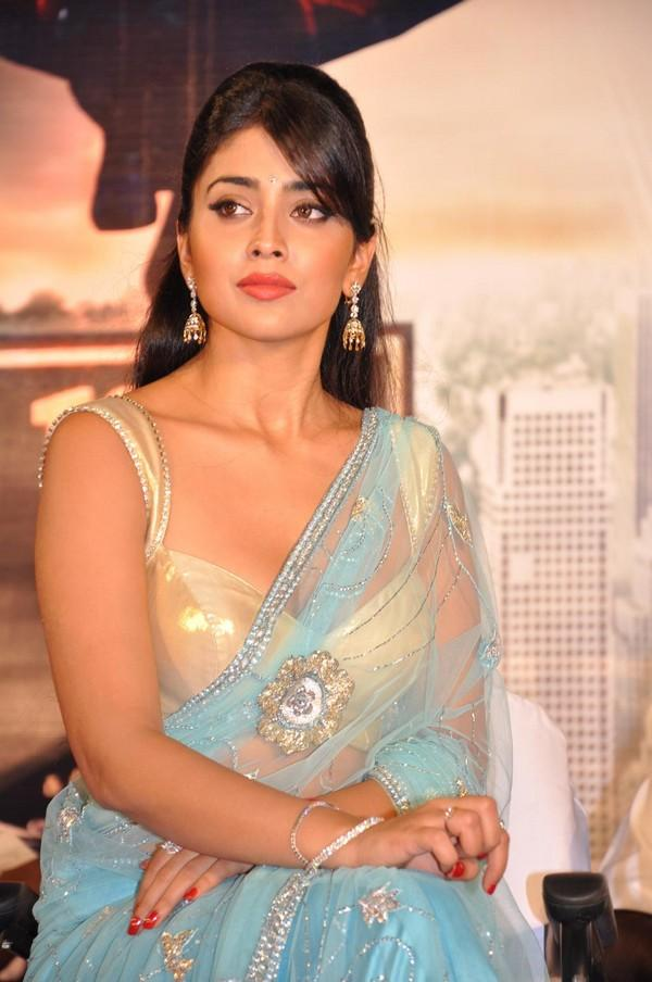 Shriya Saran Transparent Saree Beauty Still