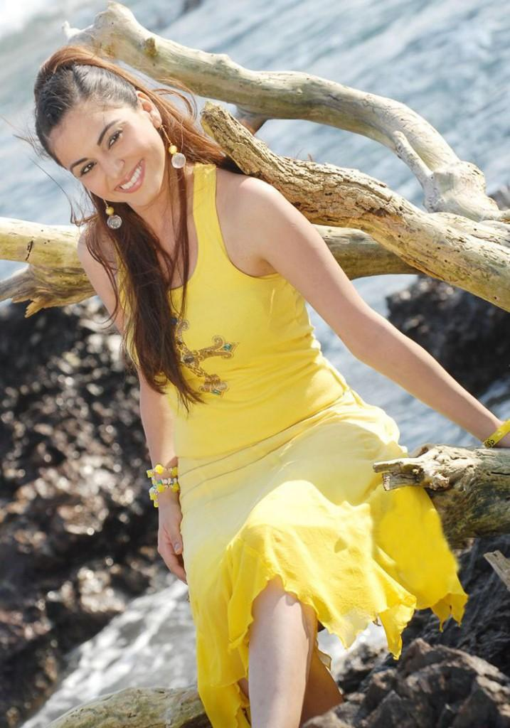 Hot Actress Shraddha Arya Stunning Pic