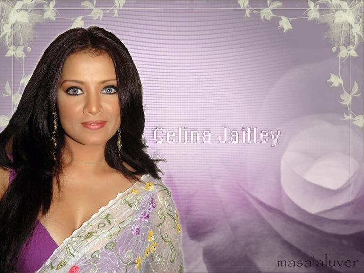 Glamourous Celina Jaitley Wallpaper In Saree