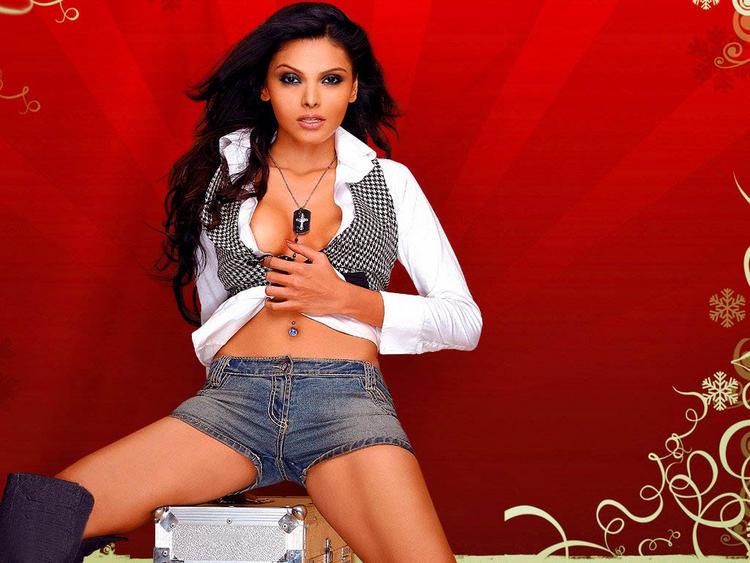 Mona Chopra Sexy Navel Exposing Wallpaper
