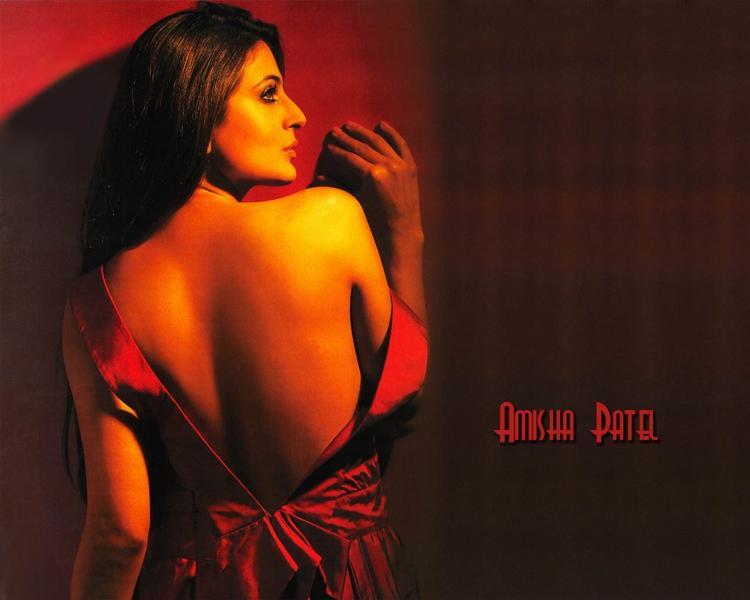 Amisha Patel Sexy Bare Back Pics