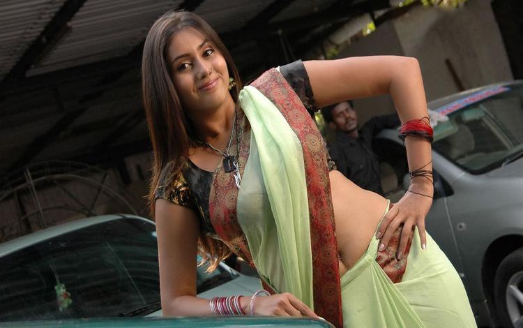 Namitha Sexy Still In Saree