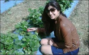 Cool Shilpa Shetty Cute Smiling Pics