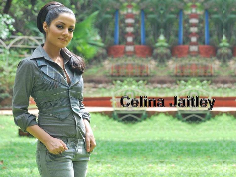 Celina Jaitley Stylist and Stunning Wallpaper