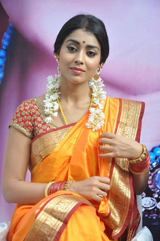 Shriya Saran In Saree Charming Look Still