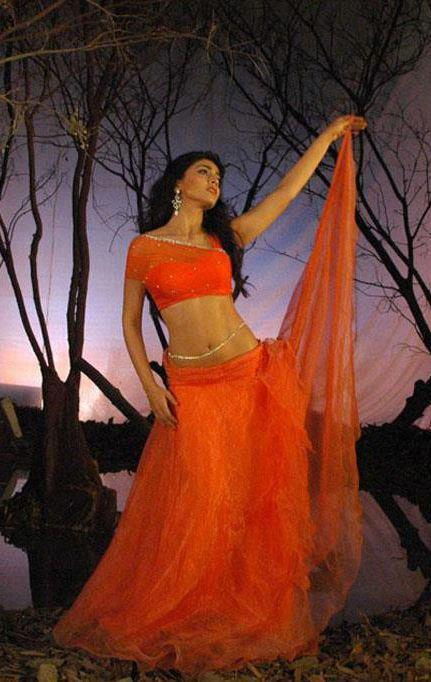 Shriya Elegant Look Photo Still In An Orange Ensemble