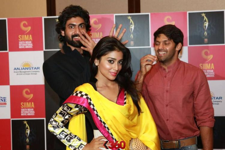 Rana,Shriya And Arya Cool Posed For Camera At 2nd Edition Of SIIMA Awards 2013
