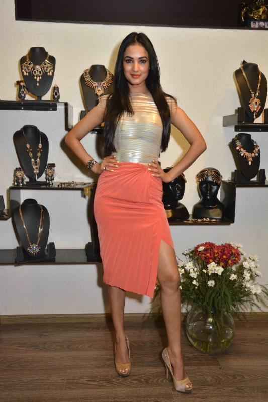 Sonal Chauhan Flaunt Her Legs At Amit Agarwal Collection Preview Event