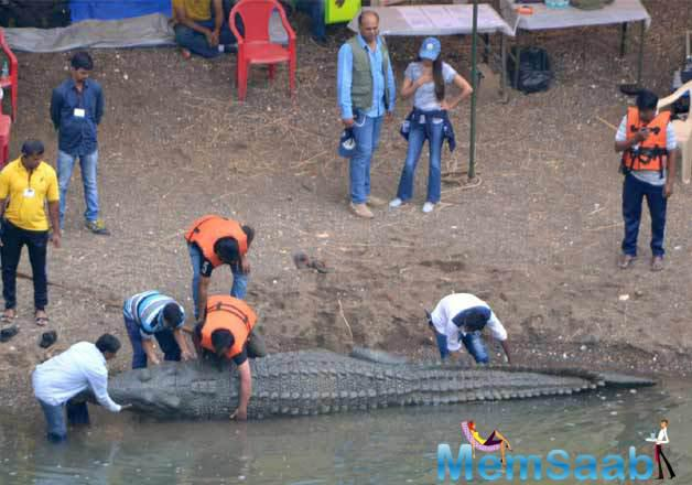 Hrithik Roshan had also completed a shot, where he had to fight a 20-feet crocodile and another sequence had him fighting a tiger.