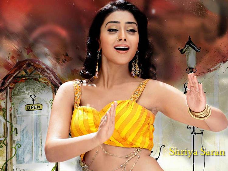 Amazing Actress Shriya Saran Still
