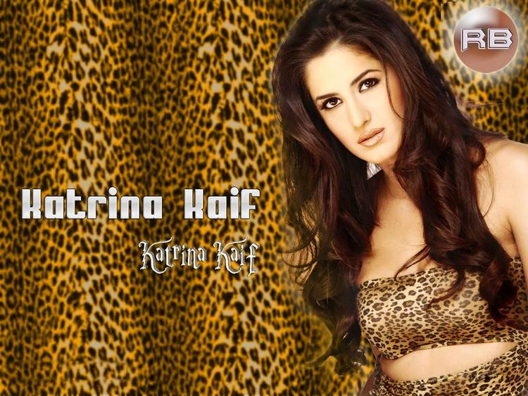Bolly Beauty Queen Katrina Kaif Wallpaper