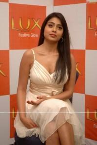 Shriya Saran Hot Glamour Stills