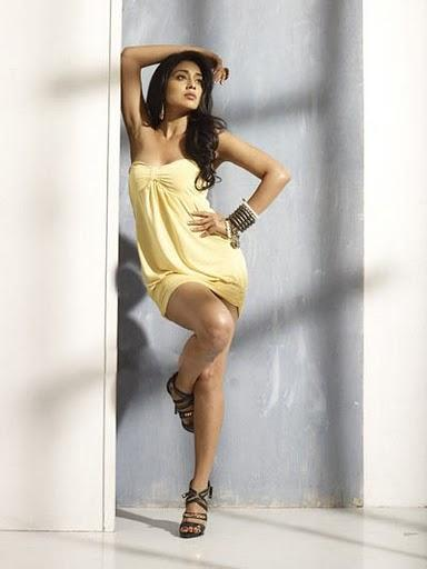 Shriya Saran Hot Photo Shoot