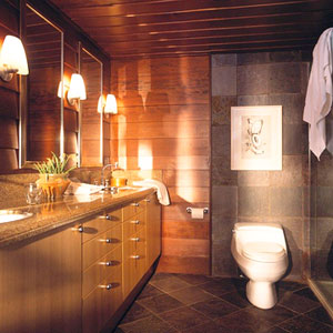 dark bathroom with short toilet against stone wall