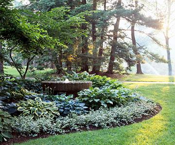 Hosta shade garden plan cottage garden living for Bhg garden plans