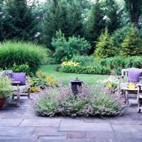 Coppercafe: Garden Transplant: Lavender