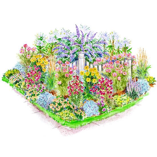 garden plans birds & butterflies
