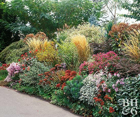 water garden plan