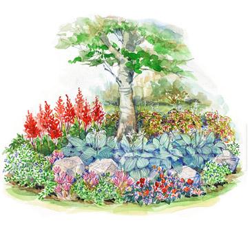 Small Space Shade Garden Plan