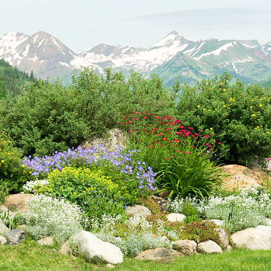 Rock Garden Design Ideas