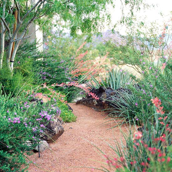 easy-care desert landscaping ideas
