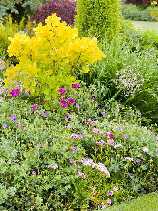 tips successful flower garden