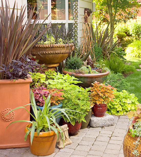 group container gardens