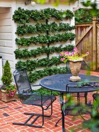 Cheap Backyard Ideas