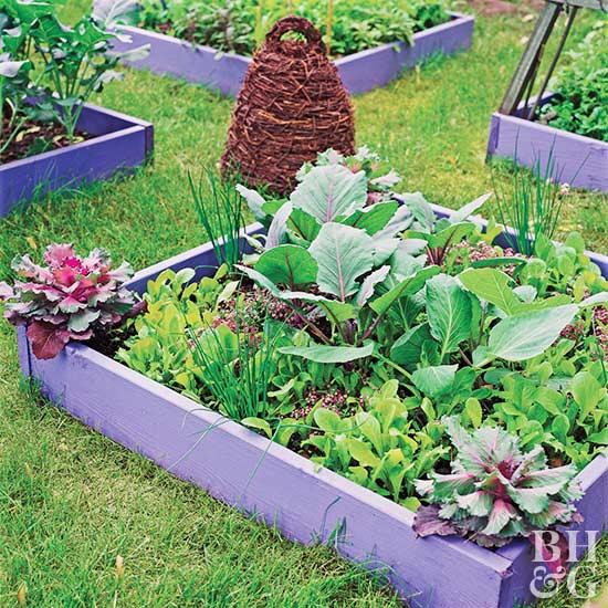 Small Space Vegetable Garden Plan & Ideas