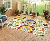 Colorful Outdoor Rugs - Rugs Ideas