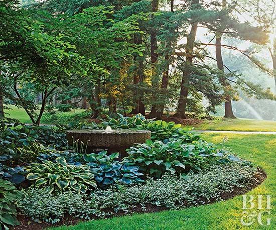 hosta-filled shade garden