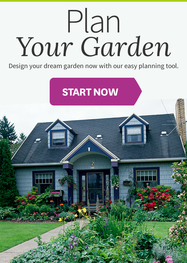 Free Backyard Design Tool garden planning software mtcalvarybc net landscaping planner free software13 homelkcom Free Interactive Garden Design Tool No Software Needed Plan A
