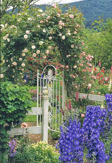 Cottage Appeal for Your Garden Gate