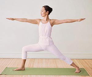 Warrior II yoga standing pose